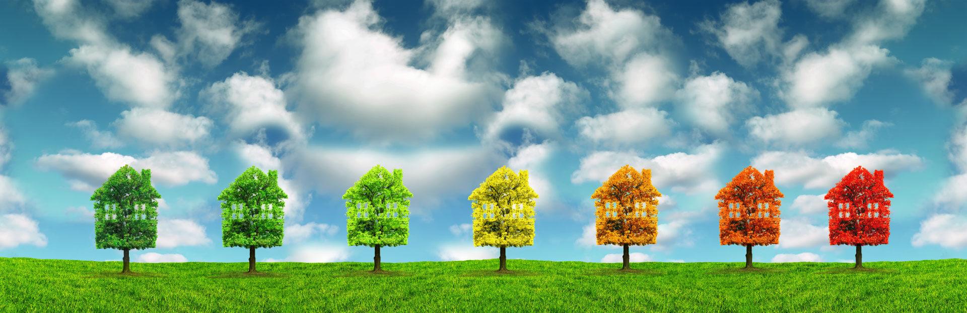 Immobilienwerte -<br />Lösungen für Lebensräume